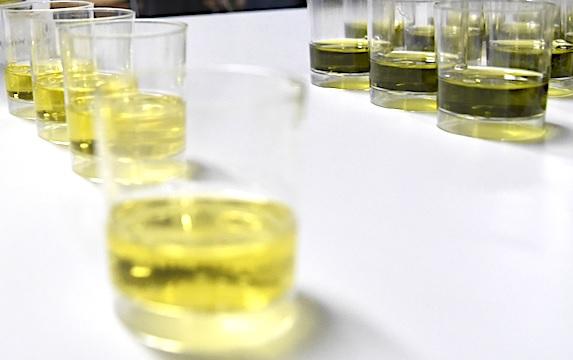 olijfolie proeven