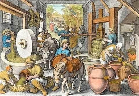 productieproces olijfolie