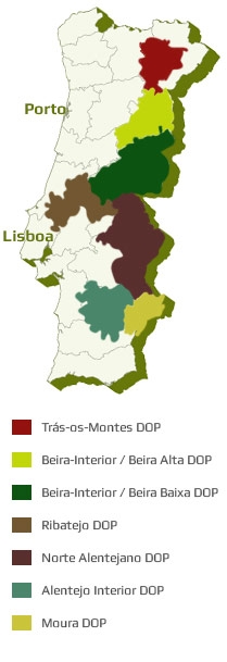 portugal olijfolie regio